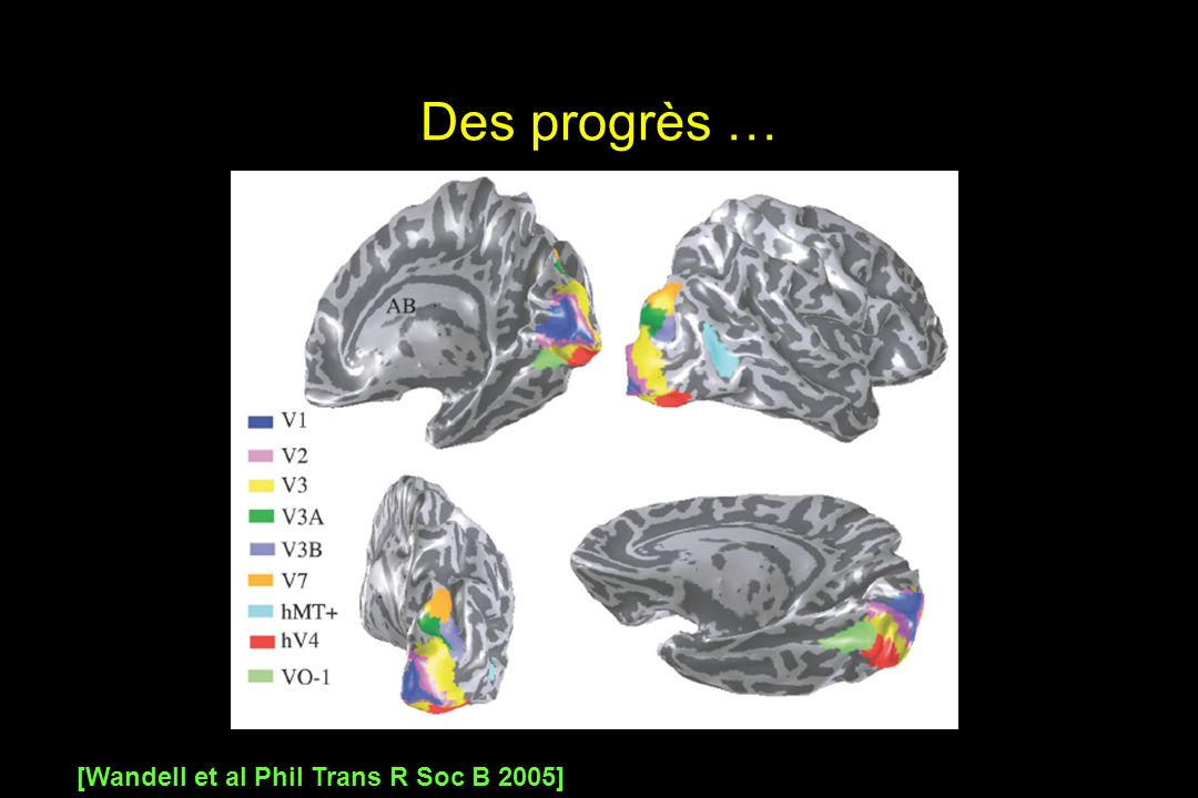 Des progrès … [Wandell et al Phil Trans R Soc B 2005]